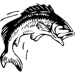 Jumping Fish clipart, cliparts of Jumping Fish free download.