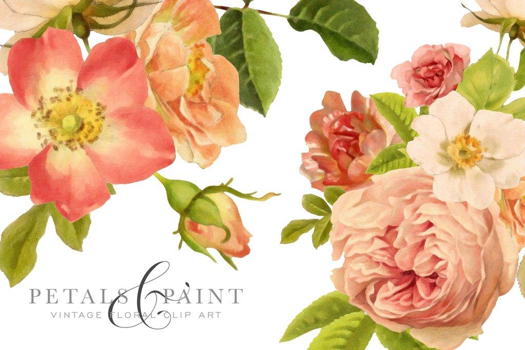 Petals and Paint Vintage Flower Graphic Clip Art.