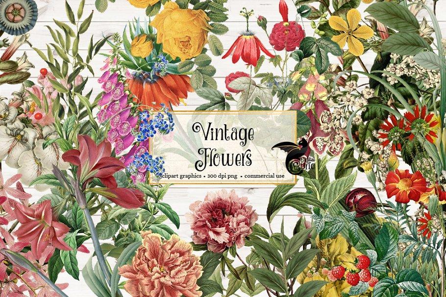 Vintage Flower Clipart.
