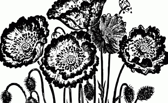 Flower Clipart Black And White Free - Flowers Healthy