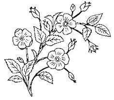 vintage flower clipart black and white 20 free Cliparts ...