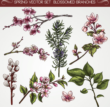 Vintage flower vectors free vector download (18,586 Free.