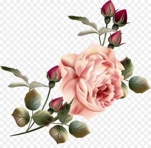Flower Garden roses Clip art.