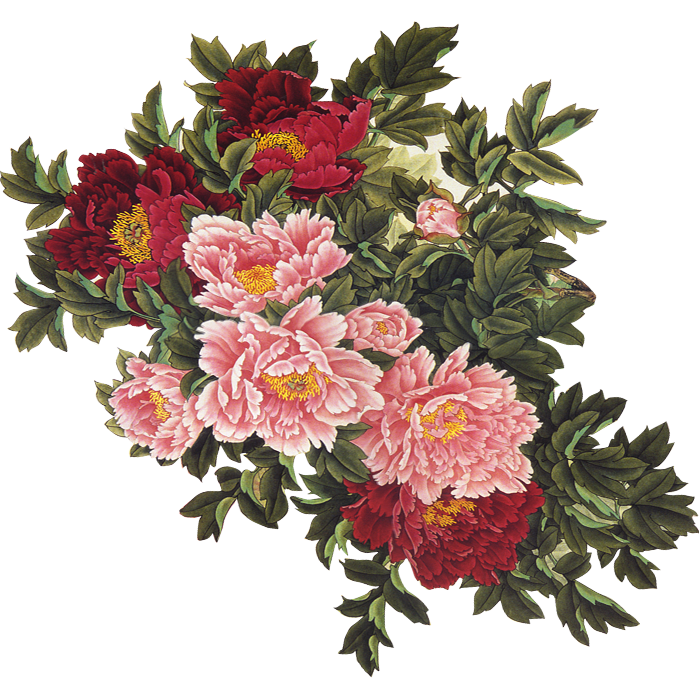 Flower uc544uc774ub514uc5b4 Clip art.