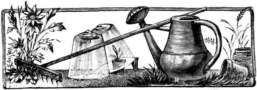 Vintage garden clip art.