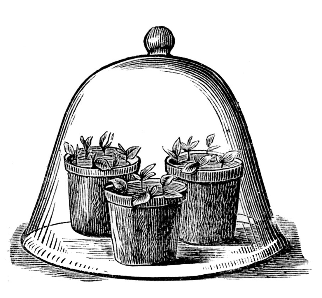 Free Vintage Gardening Cliparts, Download Free Clip Art.