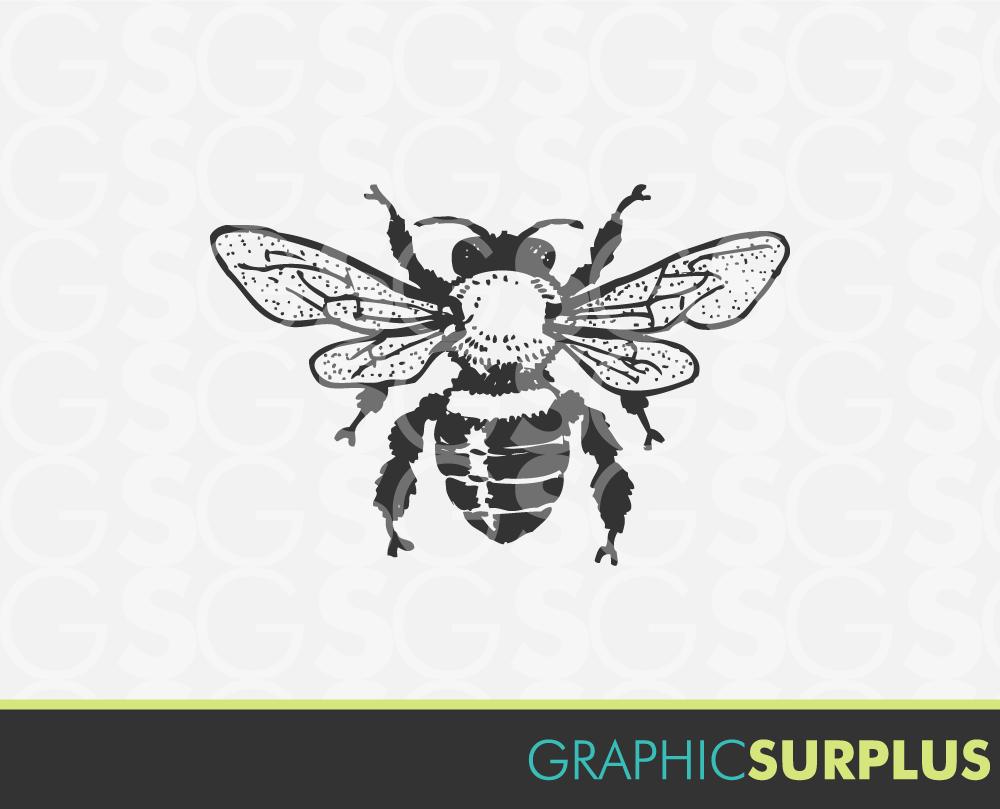 INSTANT DOWNLOAD Vintage Clip Art Honey Bee Line Art Clipart.