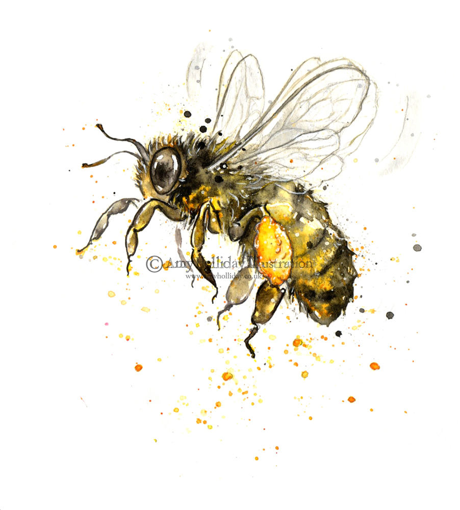 Vintage Honey Bee DrawingGallery of Home Design, And More.