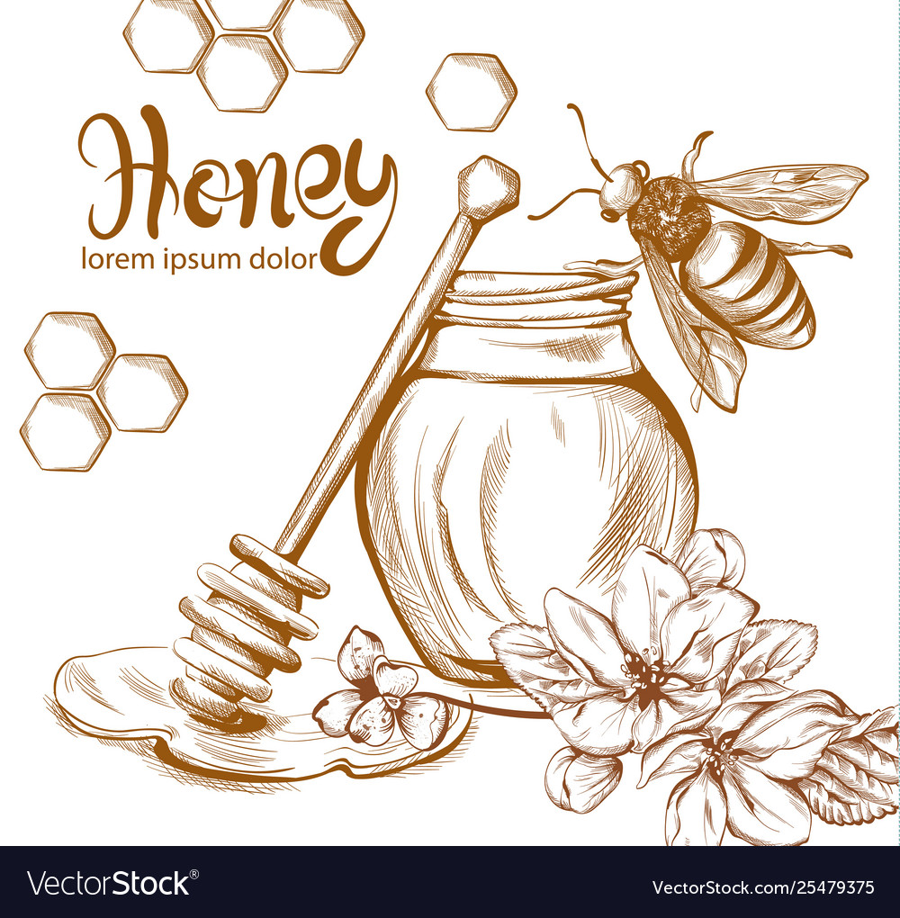 Honey bees jar line art retro vintage old.