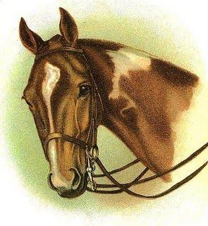 simple vintage horse clipart.