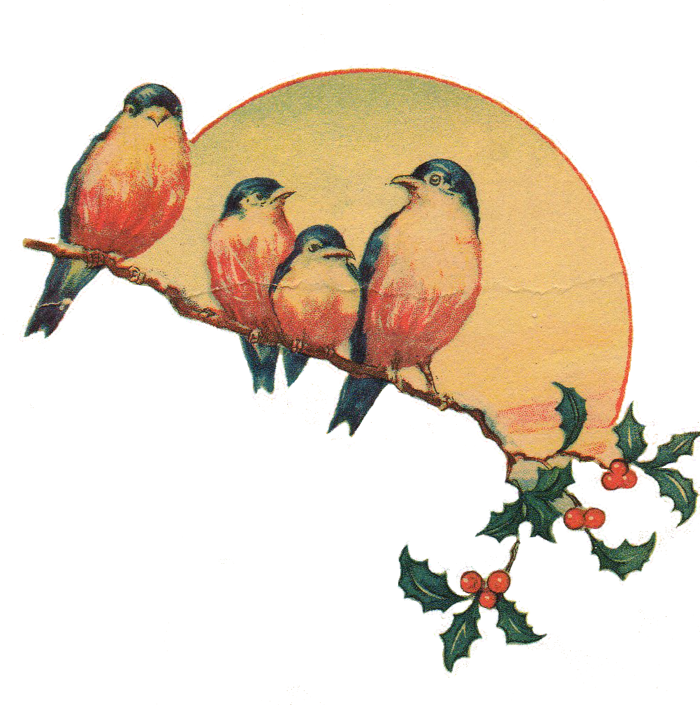 Vintage Love Birds PNG Transparent Vintage Love Birds.PNG.