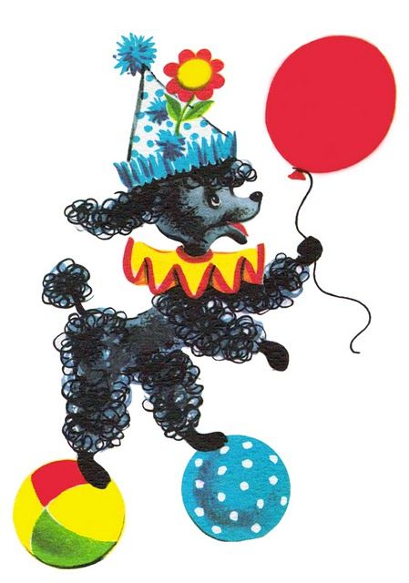 poodle, balloon, party.