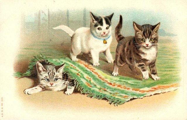 3783 Kitten free clipart.