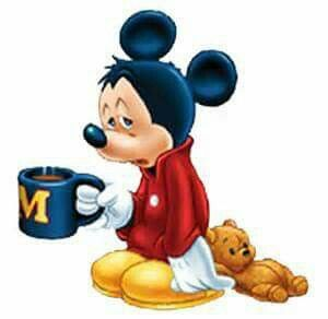 Mickey before morning tea.