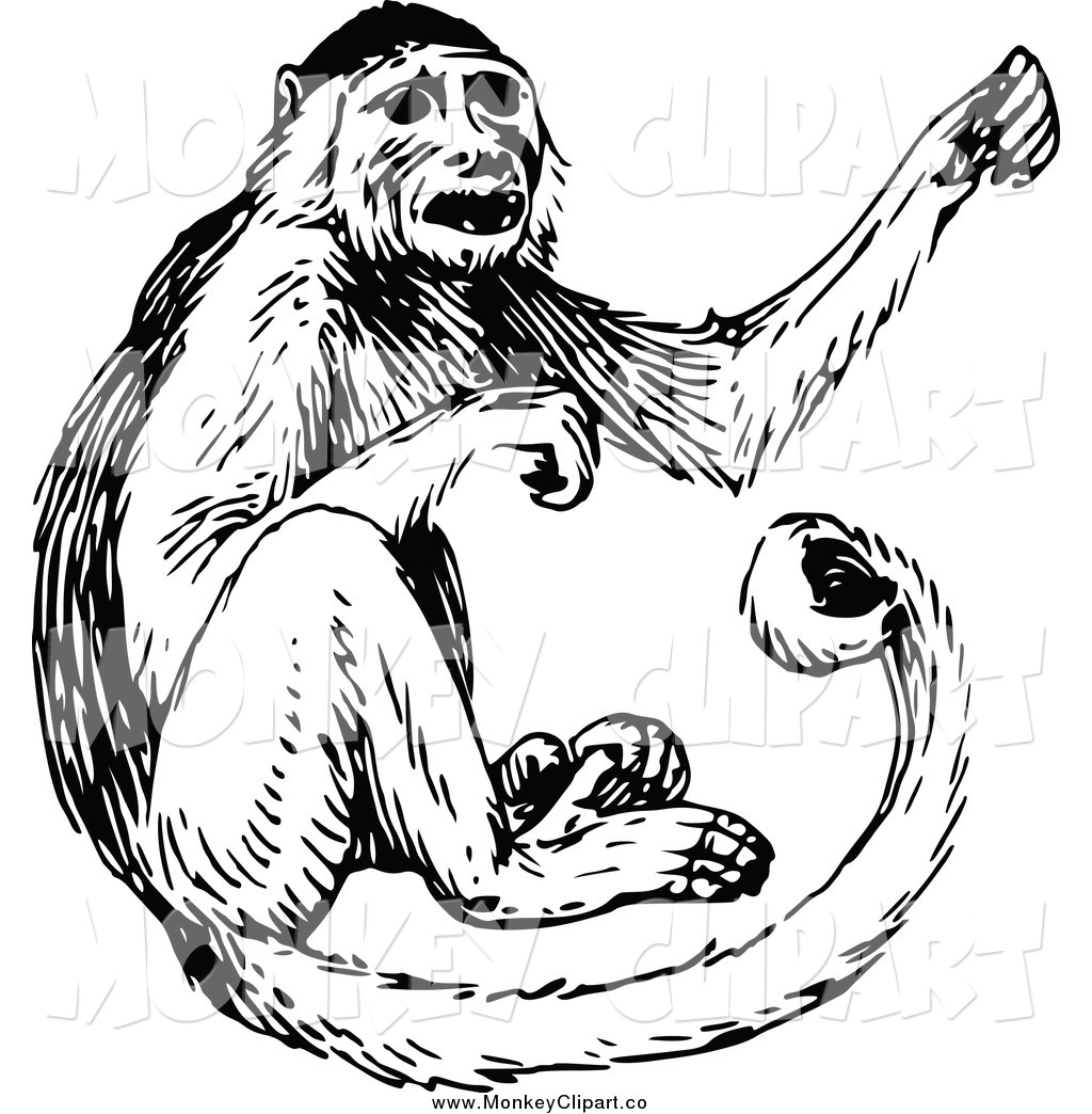 Monkeys clipart vintage, Monkeys vintage Transparent FREE.