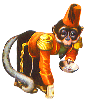 Circus monkey asking for money in 2019.