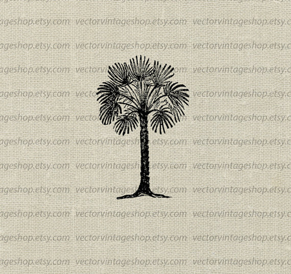 Palmetto Tree Vector Instant Download Clip Art, Tropical.