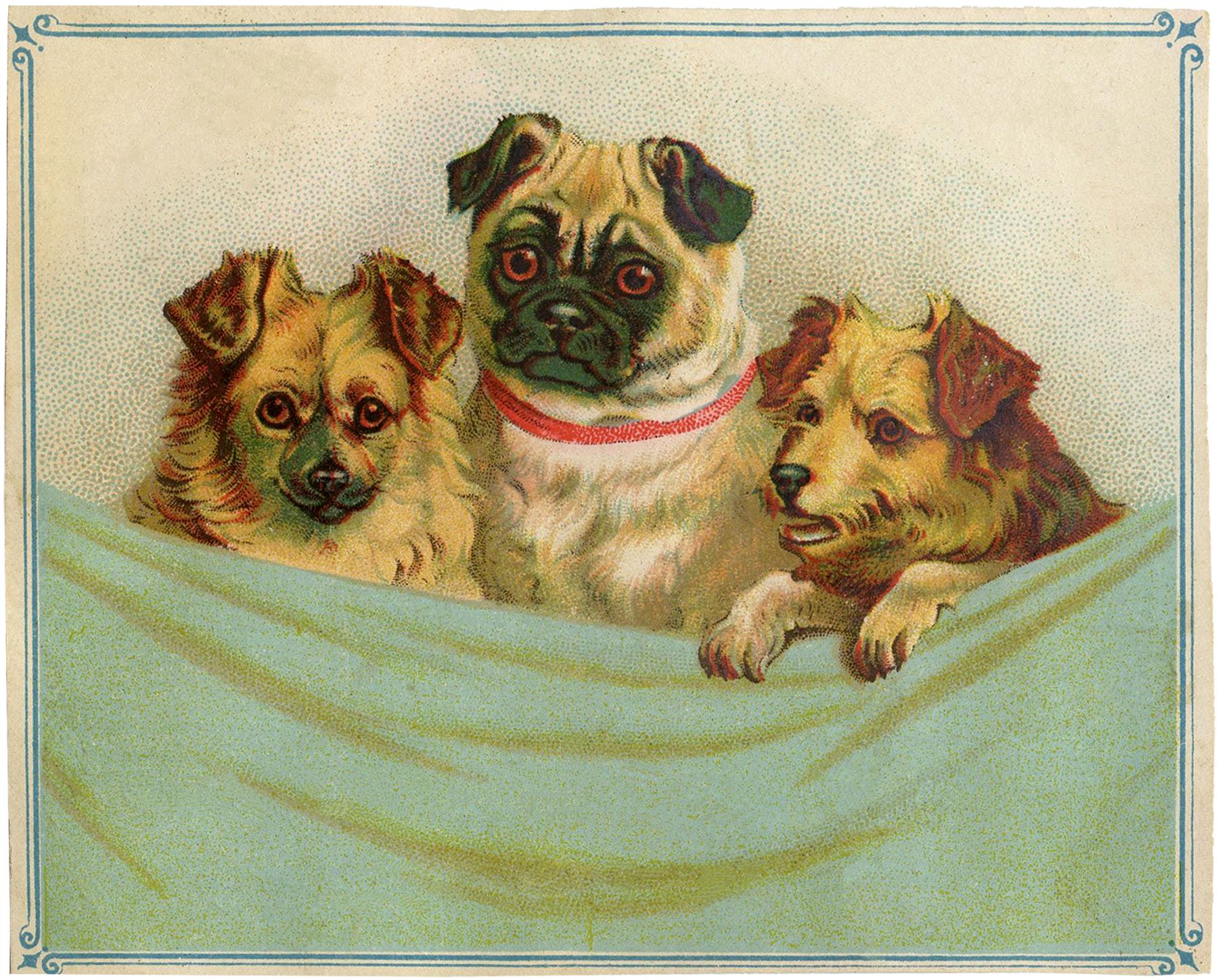 Vintage Puppies Clip Art!.