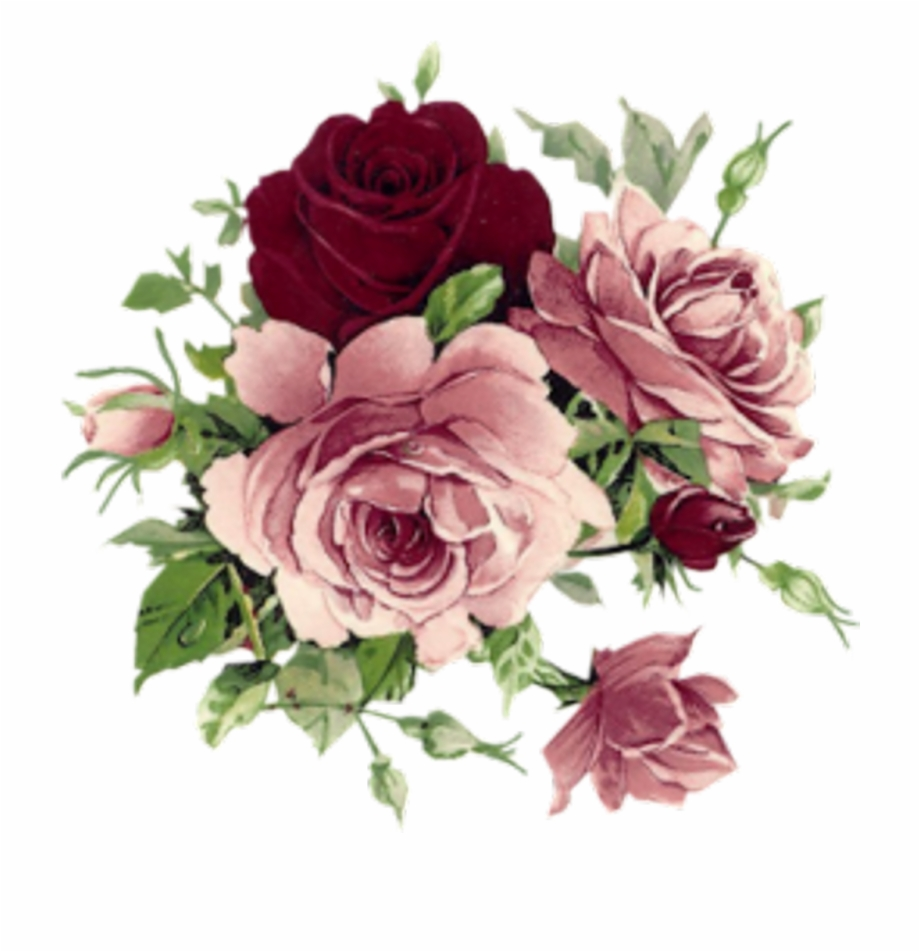 Aesthetic Flowers Download Free Clipart With A Transparent.