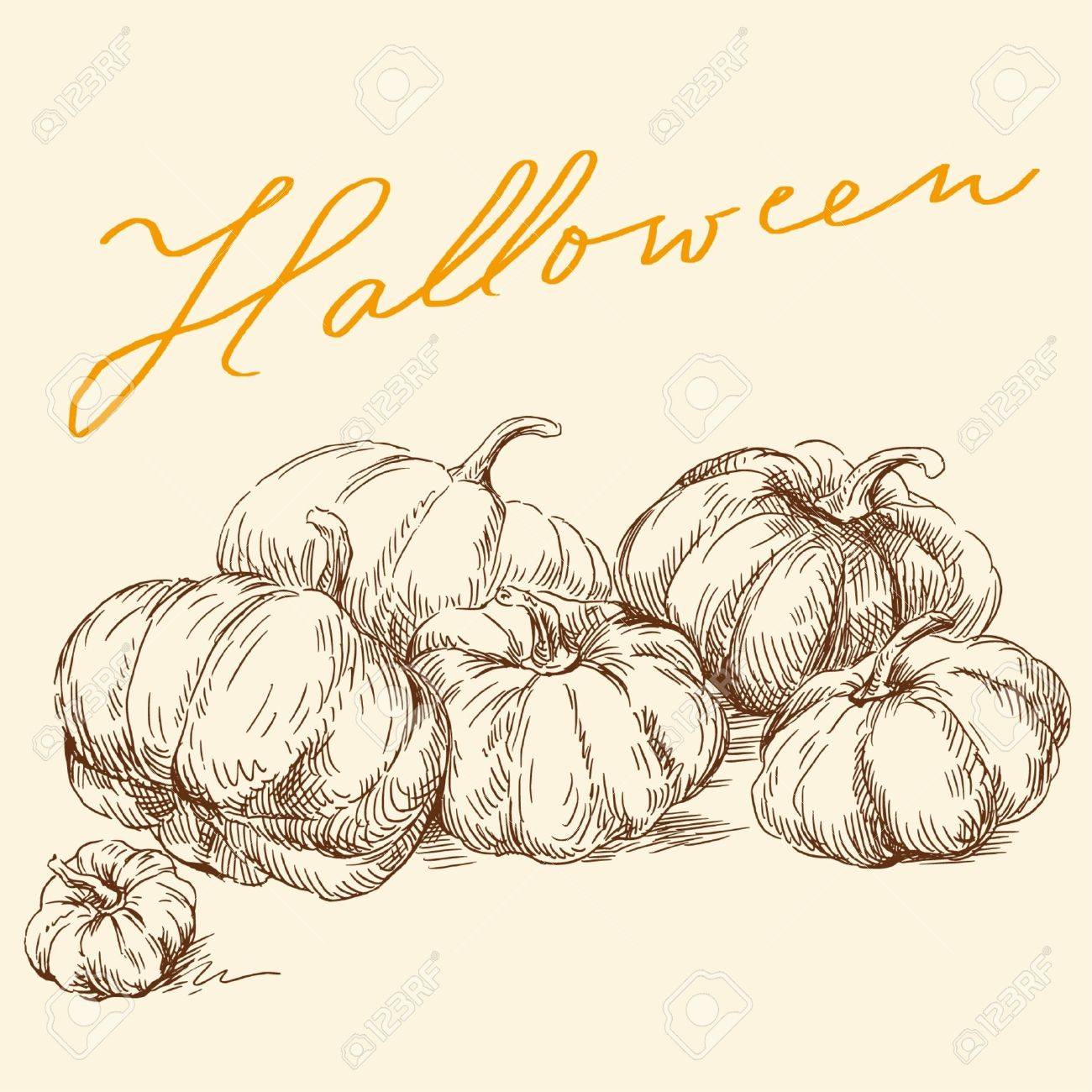 Vintage pumpkin drawing clipart clipground