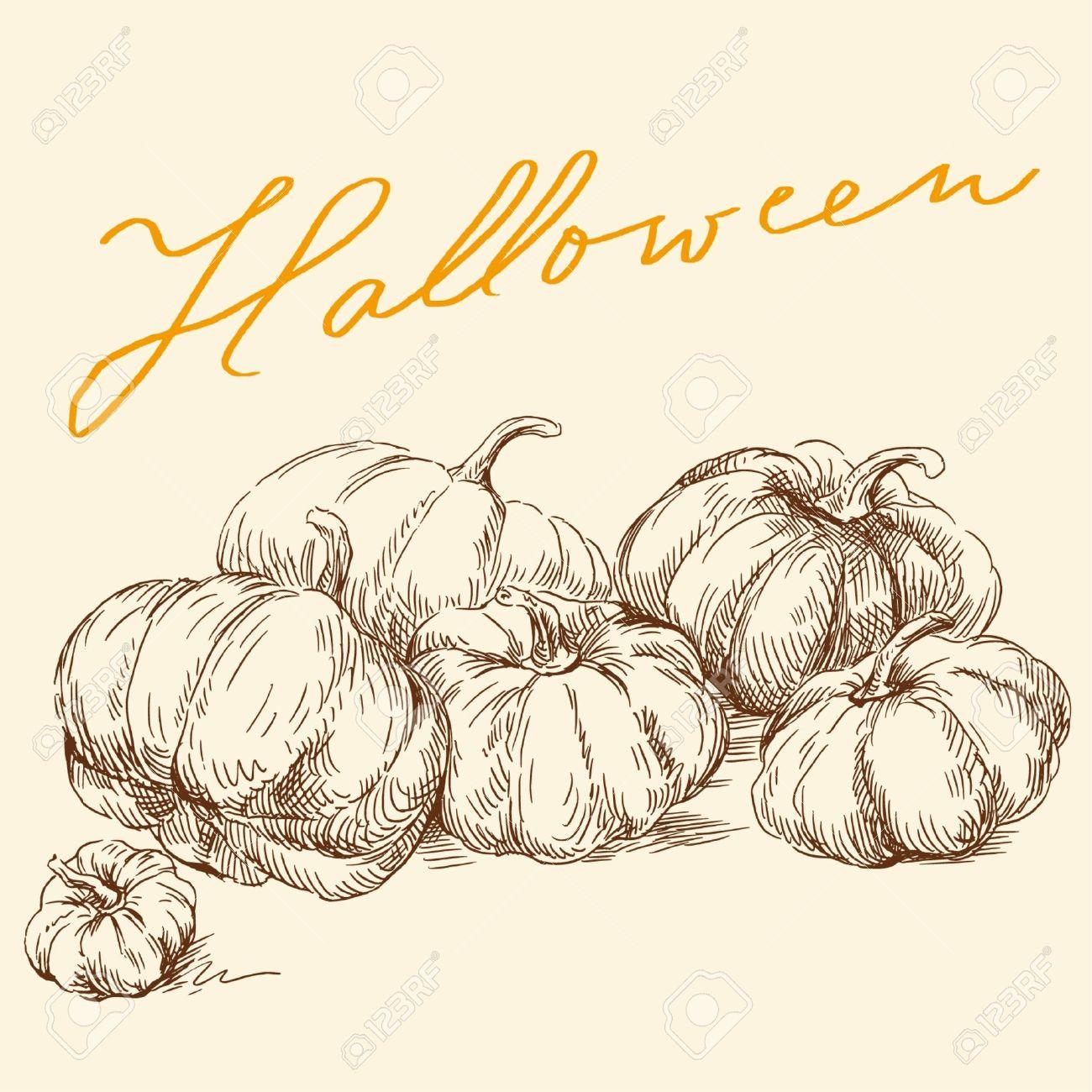 Hand Drawn Pumpkins Royalty Free Cliparts, Vectors, And Stock.