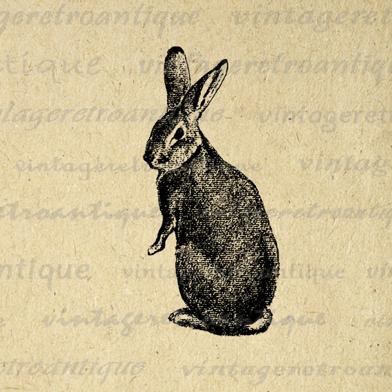 Vintage Rabbit Clipart.