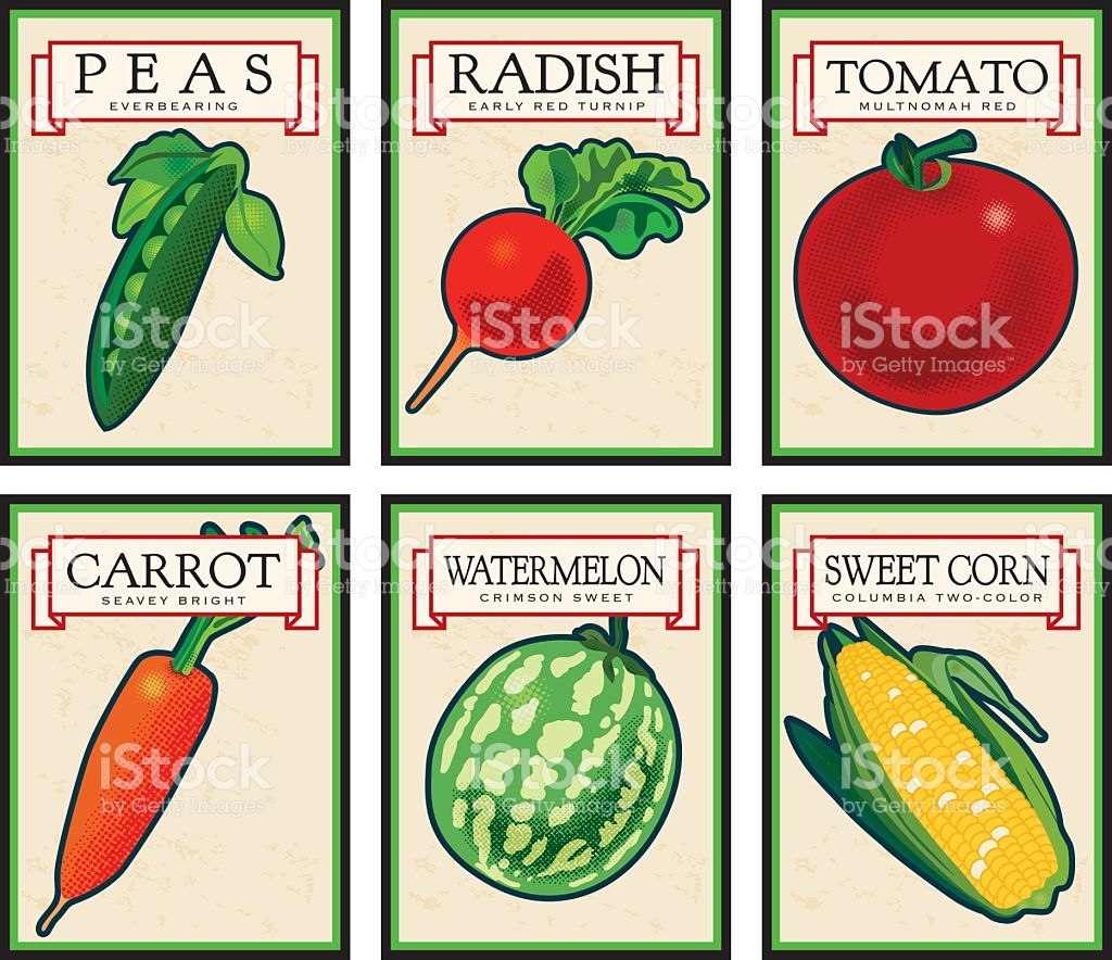 Vintage Seed Packets stock vector art 483376841.