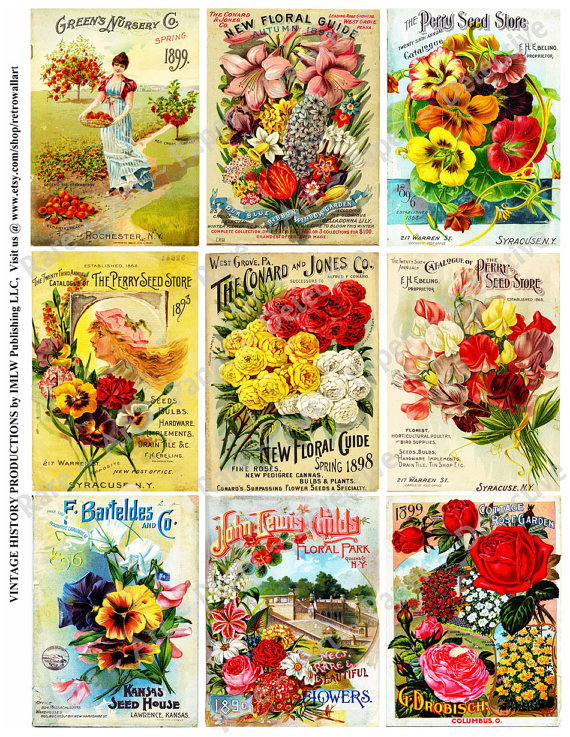 Vintage Seed Packet Clipart.