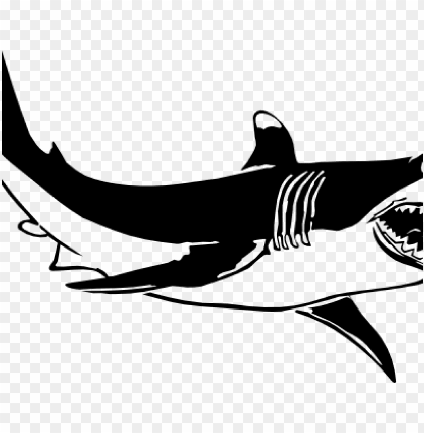 shark clipart black and white shark clipart black and.