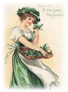 263 Best St. Patrick\'s Day.