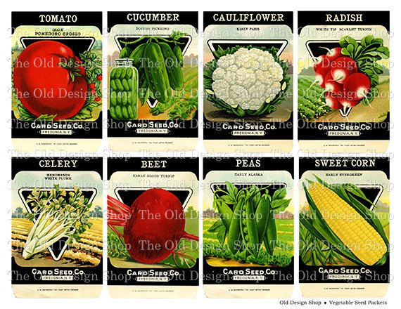 Vintage Vegetable Seed Packets Printable Digital Collage.