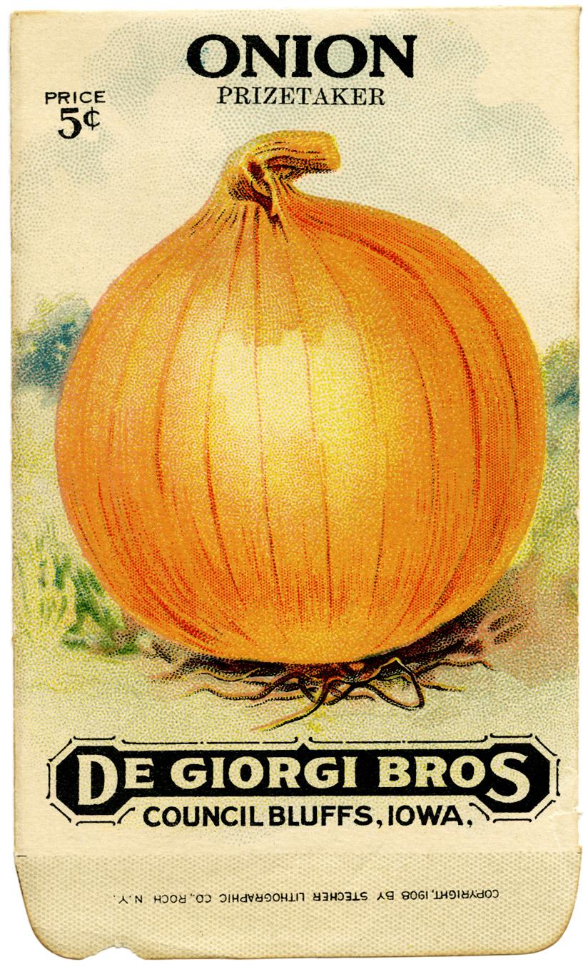 De Giorgi Bros Vintage Onion Seed Packet.