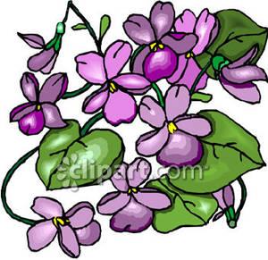 Clip art violet.