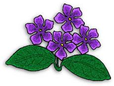 Violet Clipart.