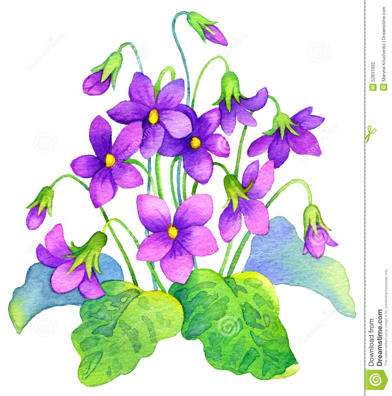 Watercolor Painting. Delicate Flowers Bush Forest Violet Stock.