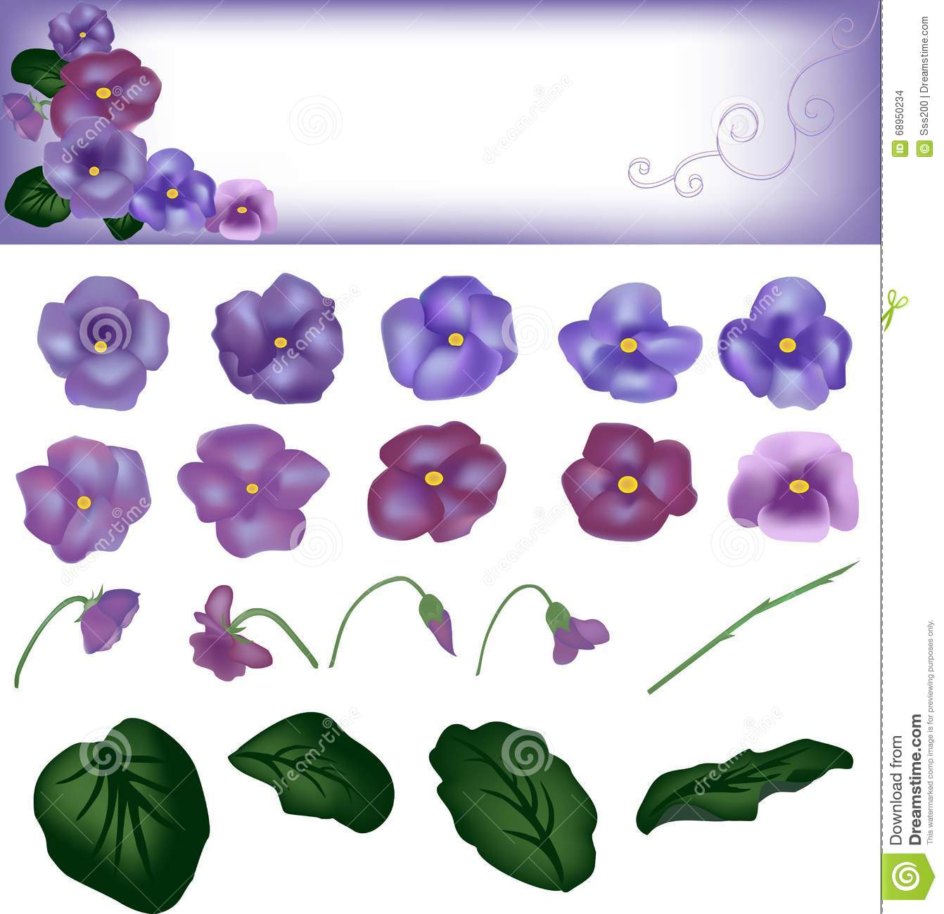 Violet Flowers With Round Leaves, A Card With Design From Flowers.