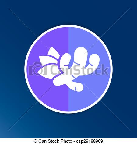 Clip Art Vector of Ginger icon.