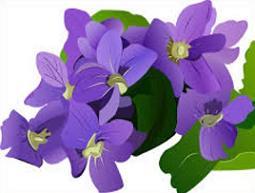 Free Violet Clipart.
