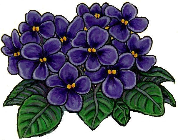 African violet clip art.