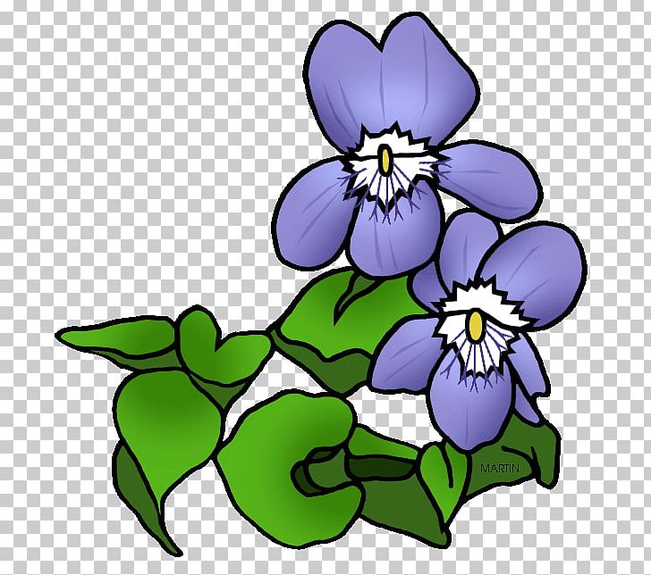 African Violets Purple PNG, Clipart, African Violets.