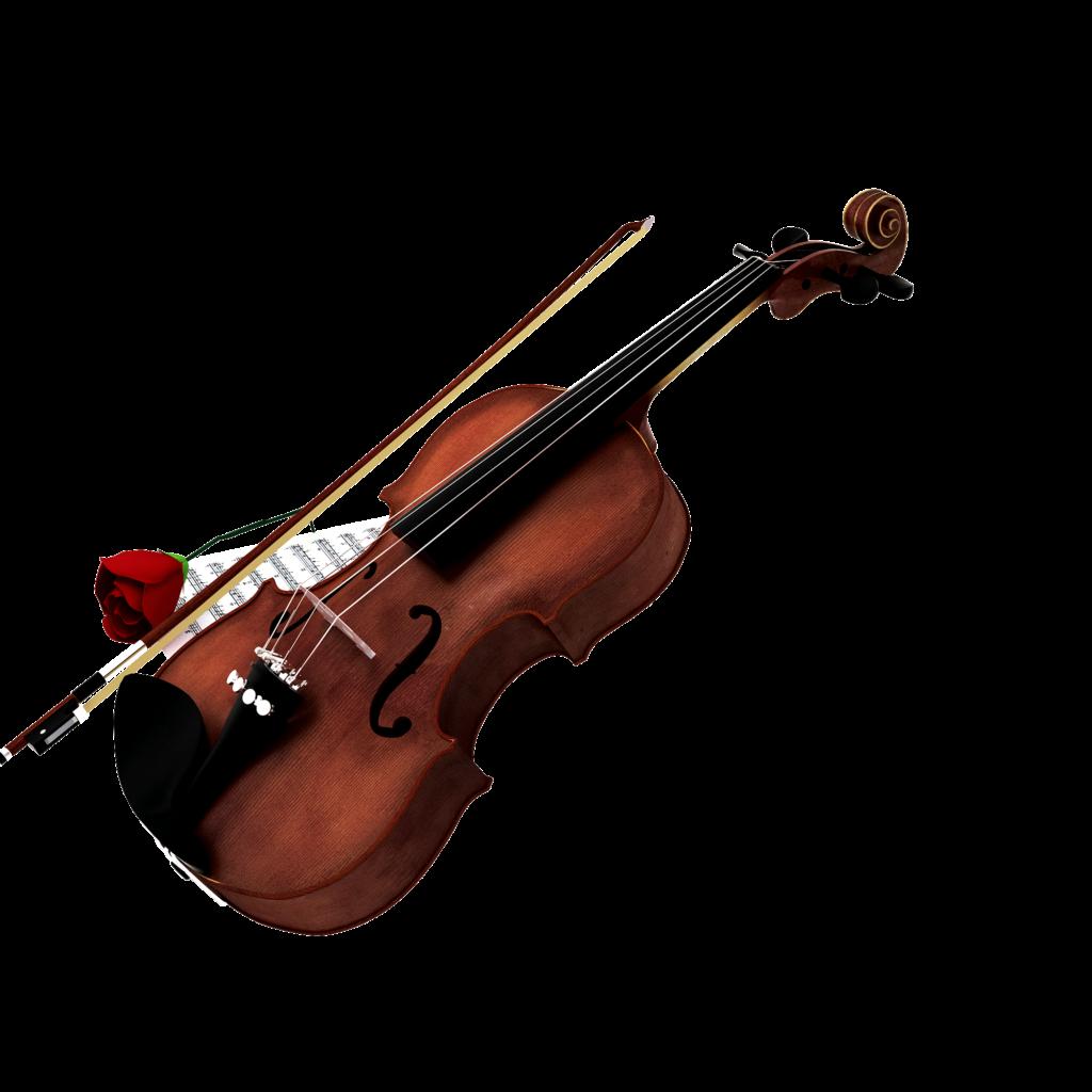 Violin Cello Double bass Clip art.