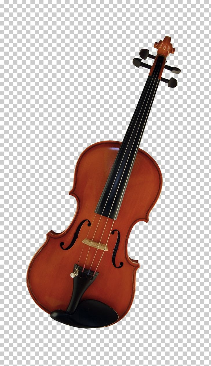 Violin String Instrument Musical Instrument Tuning Peg PNG.