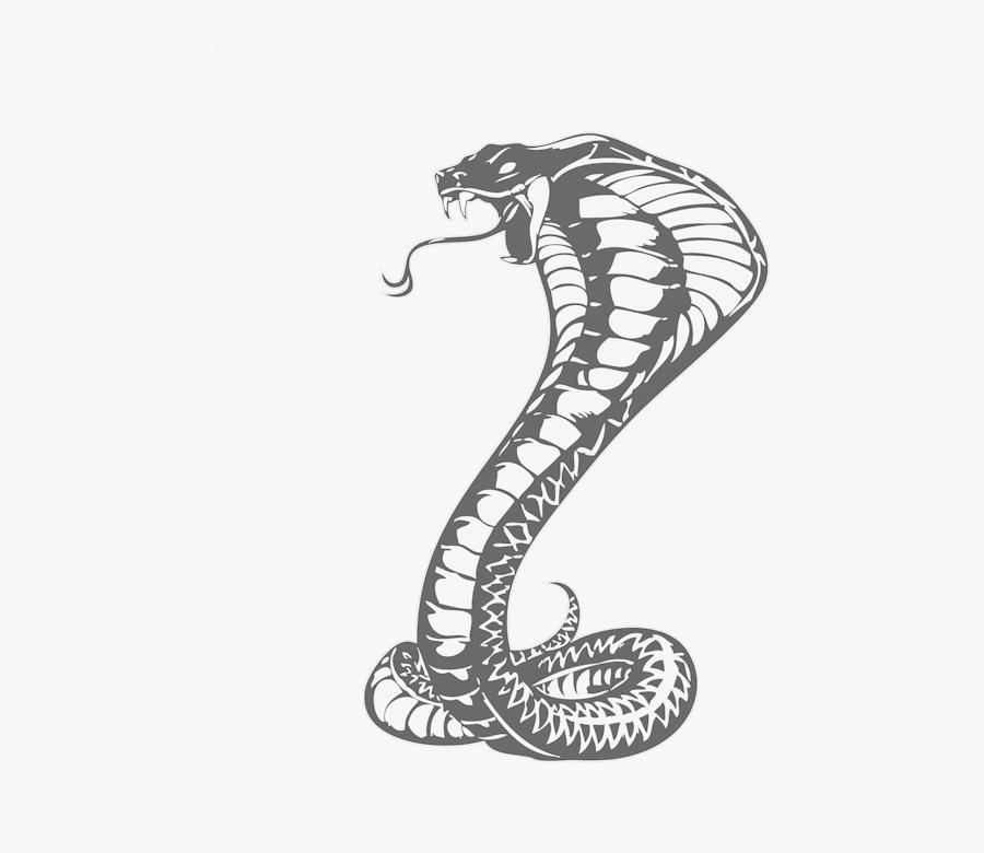 Cobras King Cobra Snakes Tattoo Snake Drawing Clipart.