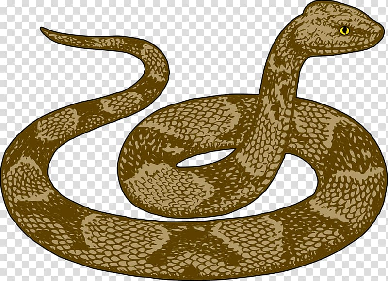 Serpent Pictures transparent background PNG cliparts free.