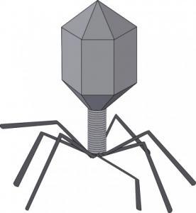 Virus Clip Art Download.
