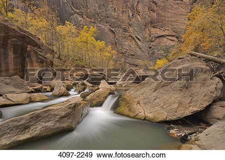 Stock Photograph of River passing through a forest, Virgin River.