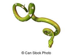 Morelia viridis Clipart and Stock Illustrations. 44 Morelia.