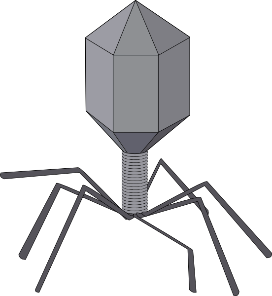 Virus Clip Art at Clker.com.
