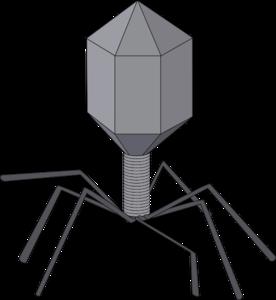 Virus Clipart.