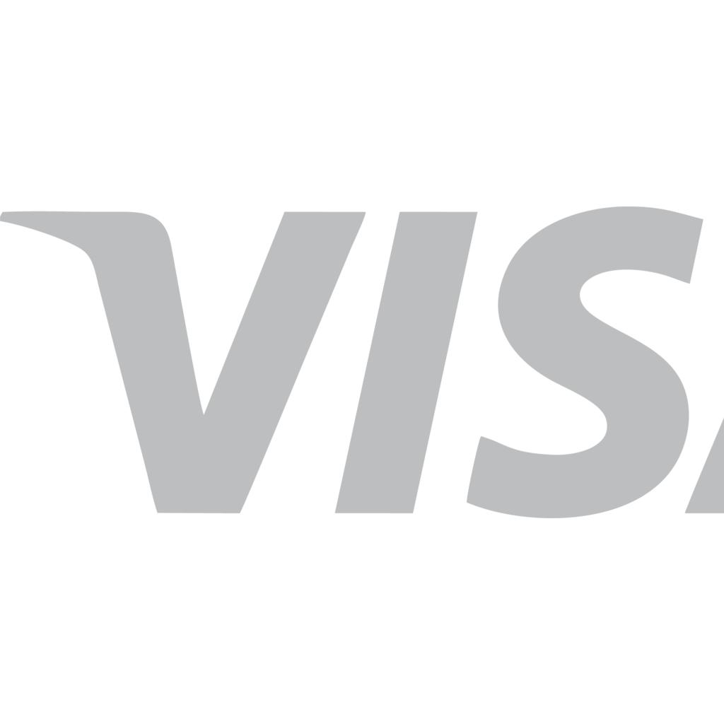 White Visa Logo.